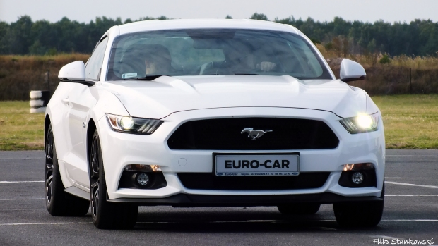 Ford Store Euro Car Gdynia Motoryzacjafilipa